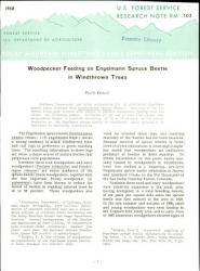 Woodpecker Feeding On Engelmann Spruce Beetle In Windthrown Trees Book PDF