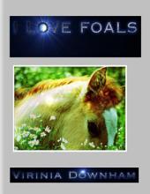 I Love Foals