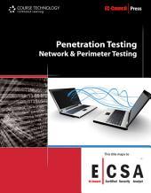 Penetration Testing: Network & Perimeter Testing
