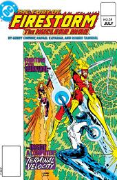 The Fury of Firestorm (1982-) #24