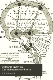 Nerves in order, or, The maintenance of health