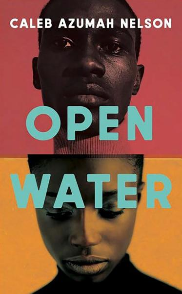 Download Open Water Book
