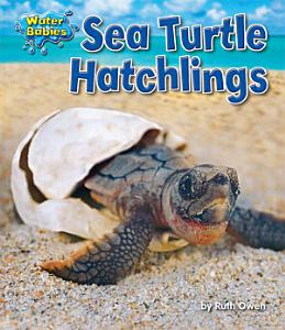 Sea Turtle Hatchlings PDF
