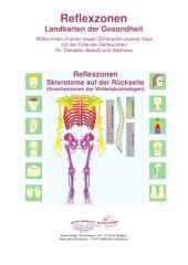 Sklerotome auf der Rückseite (Knochenzonen der Wirbelsäulenetagen): Reflexzonen - Landkarten der Gesundheit