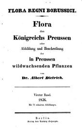 Flora regni Borussici: flora des Königreichs Preussen oder Abbildung und Beschreibung der in Preussen wildwachsenden Pflanzen, Band 4