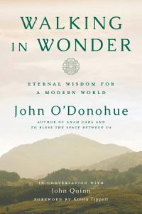 Walking in Wonder Book
