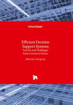 Efficient Decision Support Systems
