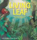 Plant Life: Living Leaf