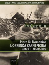 Breve storia della Prima Guerra Mondiale vol. 5: L'orrenda carneficina
