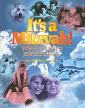 It s a Mitzvah  PDF