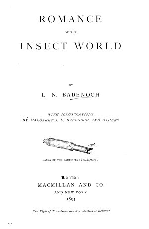 Romance of the Insect World
