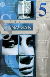 The Sandman (1988-) #45