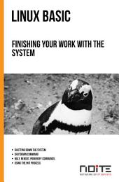 Finishing your work with the system: Linux Basic. AL1-021