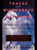 Tracks in the Wilderness of Dreaming PDF