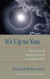 It's Up to You: The Practice of Self-Reflection on the Buddhist Path