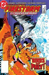 The Fury of Firestorm (1982-) #27