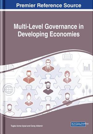 Multi Level Governance in Developing Economies PDF