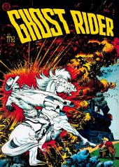 The Ghost Rider, Number 3, Blasts of Doom