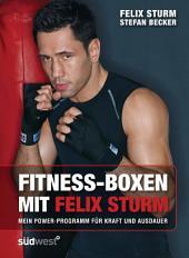 Fitness-Boxen mit Felix Sturm: Mein Power-Programm für Kraft und Ausdauer