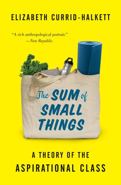 Download The Sum of Small Things Book