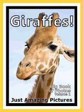Just Giraffes! vol. 1: Big Book of Giraffe Photographs & Pictures