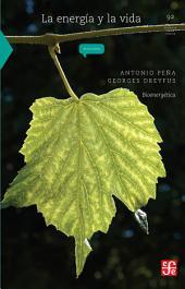 La energía y la vida: Bioenergética
