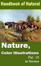 Nature, Color Illustrations Vol.19: Handbook of Nature