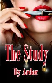 The Study: Femdom Chastity Male Submissive