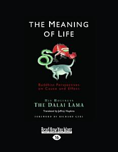 The Meaning of Life  Large Print 16pt  Book