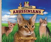 Awesome Abyssinians