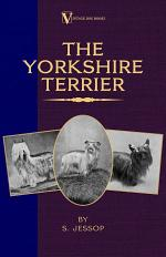 The Yorkshire Terrier (A Vintage Dog Books Breed Classic)