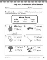 Second Grade Foundational Phonics Skills  Long and Short Vowel Mixed Review PDF
