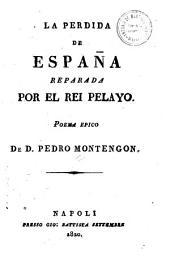 La perdida de España reparada por el Rei Pelayo: poema épico