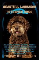 Beautiful Labrador Retriever Guide