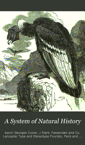 A System of natural history: containing scientific and popular descriptions of various animals