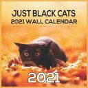 BLACK CATS 2021 Wall Calendar