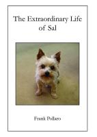 The Extraordinary Life of Sal PDF