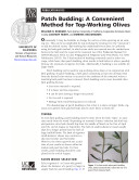 Patch Budding: A Convenient Method for Top-Working Olives
