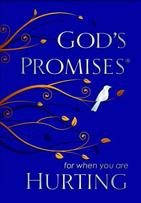 God s Promises for When You are Hurting