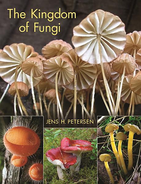 Download The Kingdom of Fungi Book