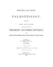 Palæontology of New York ...: Volume 5; Volume 7