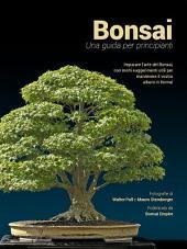 Bonsai, una guida per principianti