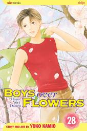 Boys Over Flowers: Volume 28