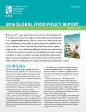 2016 Global Food Policy Report: Synopsis