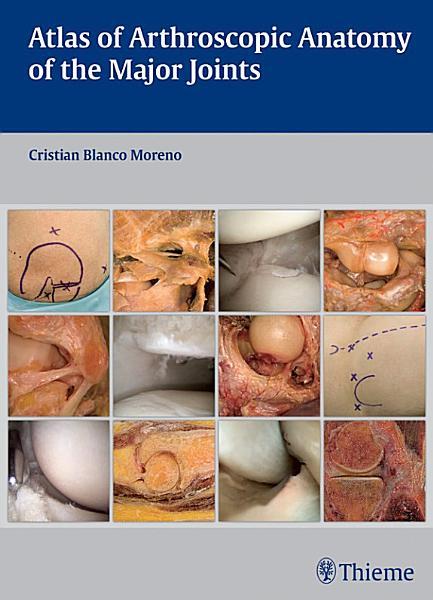 Atlas of Arthroscopic Anatomy of Major Joints PDF