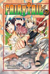 Fairy Tail: Volume 29