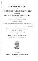 Synopsis Filicum