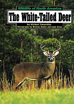 The White Tailed Deer PDF