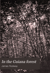 In the Guiana Forest: Studies of Nature in Relation to the Struggle for Life