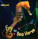 Life Cycles  Fry to Seahorse